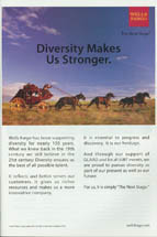 Wells Fargo & Company - Diversity Makes Us Stronger